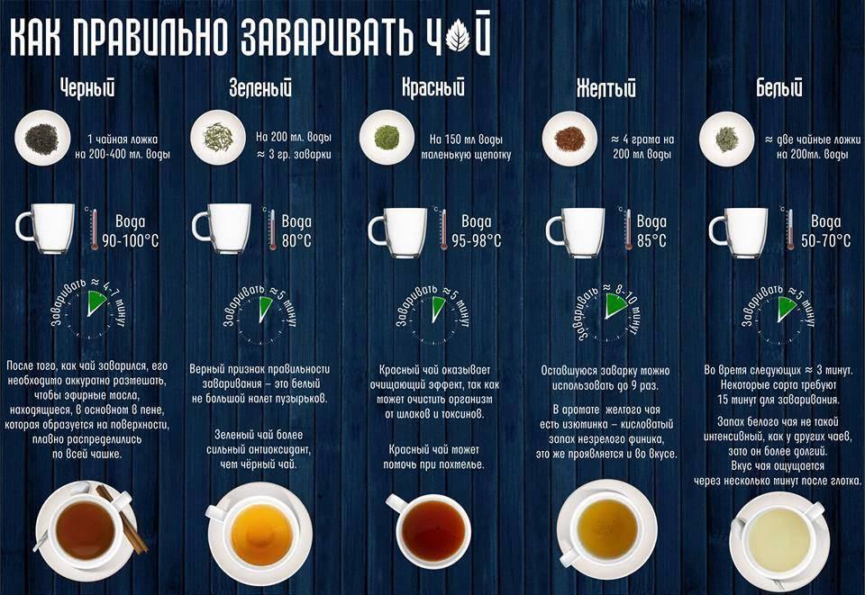 как правильно заваривать черный зеленый красный желтый белый чай  купить в киеве чай на троещине дешево